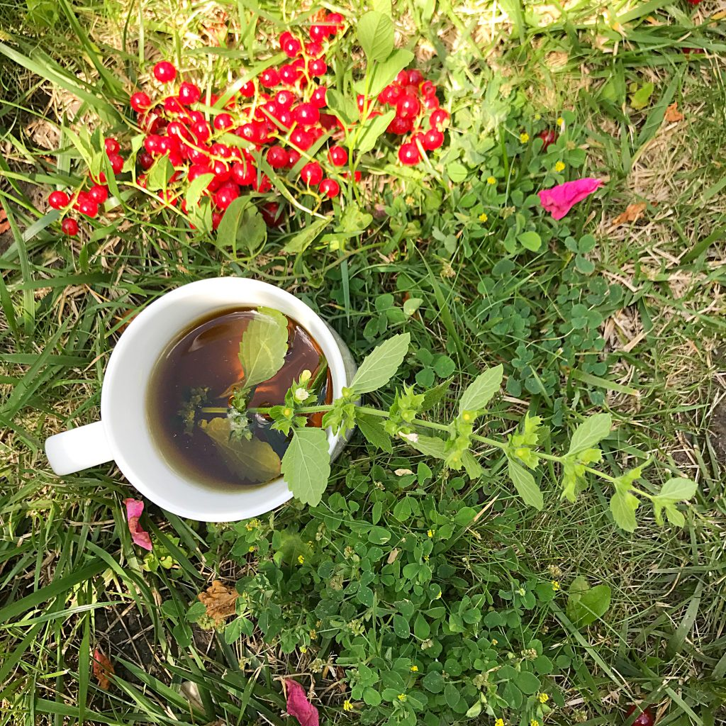 Ceai natural